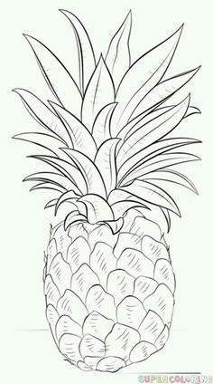 ideas for beginners Kunst Zeichnungen - How to draw a pineapple step by step. Drawing tutorials for kids and beginners Kunst Zeichnungen - How to draw a pineapple step by step. Drawing tutorials for kids and beginners. Easy Drawings For Beginners, Drawing Tutorials For Kids, Pencil Drawing Tutorials, Drawing For Kids, Art Tutorials, Cool Drawings For Kids, Sketch Ideas For Beginners, Pineapple Drawing, Pineapple Sketch