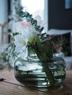 Mansikkatilan mailla: Kukkailottelua - Amaryllis, joulukukkien kuningatar? Marimekko, Glass Vase, King, Plants, Home Decor, Crystal Vase, Vases, Crystals, Decoration Home