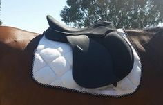 All purpose s - Saddles - Horsezone - Page 1