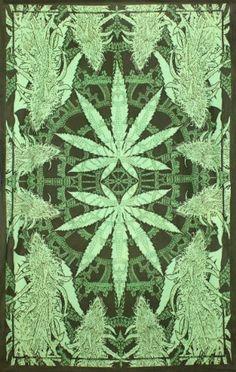 Hempest Pot Leaf Tapestry 60 x 90 Cannabis Marijuana Weed by BostonHolistics Marijuana Leaves, Marijuana Plants, Medical Marijuana, Tapestry Beach, Tapestry Wall, Wall Tapestries, Stoner Art, Weed, Dope Wallpapers