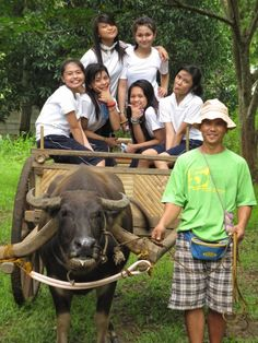 """Philippines - Carabao cart ride. BBC Boracay says: """" Schools out - on the way home with a big, big smile...."""""""