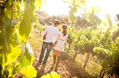Creative Family Portrait with Toddler - Sunset in a Vineyard with Grapevines and red cowboy boots - Rancho Bernardo Winery  www.rachelmcfarlinphotography.com