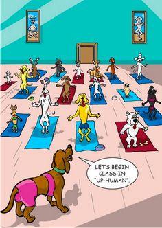 Sólo los que practicamos yoga lo entendemos.... yogihumor