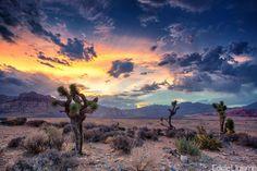most gorgeous palette, wow.  Desert Monsoon by Eddie Lluisma
