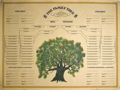 Blank Family Tree Family tree templates have previously only been available to members of a few select websites. Even then you may stil.