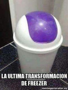 freezer evolucion