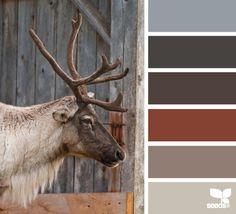 caribou color
