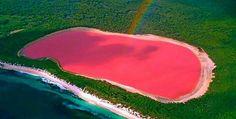 lake hillier porque é rosa - Pesquisa Google