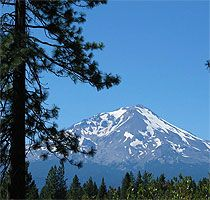 Many memories of looking at Mt. Shasta from my Grandpa's house.  <3