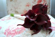 30 Luxurious Calla Lily Bouquet Burgundy For Best Wedding Bouquet Lily Bouquet Wedding, Calla Lily Bouquet, Wedding Flowers, Calla Lilies, Wedding Dresses, Outdoor Wedding Decorations, Wedding Songs, Red And Grey, Trendy Wedding