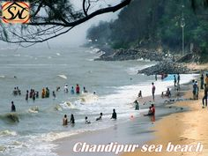 Chandipur sea beach in the district of Balasore, 16 kilometres from Baleswar, Odish, a seductive beauty of nature is a vast hinter land of antiquities and holy shrines. find best hotels in Chandipur; enjoy best Bengali and Orissa delicious foods.