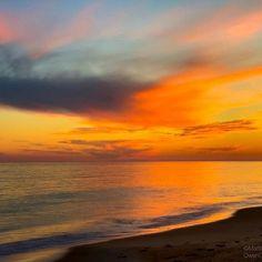 Vacation Resorts, Gulf Of Mexico, Island Life, Oysters, Family Travel, Coastal, Sunrise, Sky, Photo And Video
