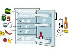 WAS GEHÖRT WOHIN?  Tipps und Fakten zur Lagerung von Lebensmitteln im Kühlschrank
