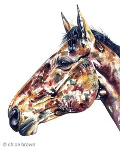 This piece has real flowers and feathers incorporated into the painting process. Commissioned as a present, this handsome horse really does have a great expression in his eye. Chloe Brown, Horse Artwork, Brown Art, Painting Process, Contemporary Artwork, Real Flowers, Pet Portraits, Original Artwork, Horses