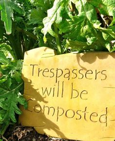 Trespassers will be composted... Gardening Quotes, Paper Shopping Bag, Outdoor Spaces, Organic Gardening, Projects, Project Ideas, Sayings, Bags, Home Decor