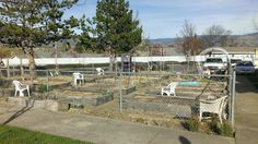 "Southern Oregon University - Student and Family Housing - ""Phase One"" - Community Garden *beginning of 2014 season"