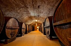Hidden away in the Hudson Valley, the small town of Washingtonville is home to America's oldest winery - featuring historic underground cellars. Hudson River, Hudson Valley, Caves, New York Wineries, Brotherhood Winery, Local Brewery, Upstate New York, Wine And Spirits, Day Trips