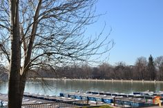 Estanque del Retiro madrileño, aunque sus orígenes son difusos, desde su creación, el Buen Retiro conto con una amplia red de canales, estanques y lagos artificialesestanque-del-retiro-1
