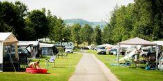 Limburg - Camping Cottesserhoeve in Vijlen te Limburg is een prachtige camping met zwembad.