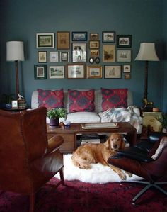 Michele & Ryan Tansey's Antiquarian Hideaway — House Tour | Apartment Therapy