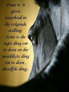 Afrikaans Quotes, Verses, Wisdom, Words, Inspiration, Biblical Inspiration, Horses, Inhalation, Motivation