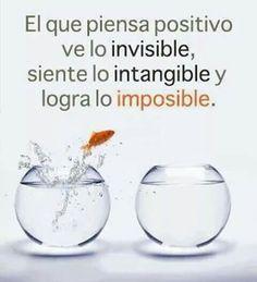 Logra lo imposible