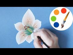 How to Paint a Lily, paint a flower, Onestroke, irishkalia - YouTube