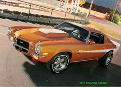 This car is AWESOME! My favorite- 1973 Camaro.  I own one, an LT in light blue. Kay