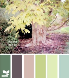 summer shade-family room transitioning into kitchen color ideas