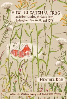 How To Catch a Frog by Heather Ross