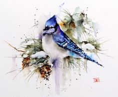 """""""WINTER BLUE JAY"""" watercolor print by Dean Crouser - from the shop """"DeanCrouserArt"""" on Etsy"""