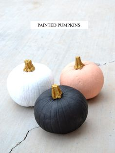 Painted pumpkins for seasonal decor.