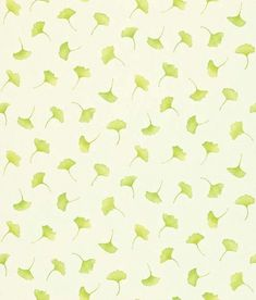 Kantu (212420) - Sanderson Wallpapers - 'Kantu' is a small gingko leaf wallpaper. Shown here in celadon on a cream background - more colours are available. Please request a sample for true colour match.
