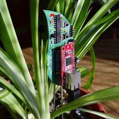 SparkFun Electronicsは、Botanicallsのリニューアル版をリリースした。 このキットは植物とのインタフェースを作りだすもので、組み立てればなんとTweetする植物を育てることが出来るようになる。 キット以外に必要となるのは、植物そのものと、イーサネット、そして電源コンセントだけだ。(下記参照) ・Ethernet connection with Internet service (10BaseT or 100Base-T with DHCP addressing)