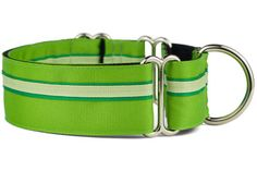 Love the color green? Our Greens Martingale Dog Collar is for you! It even has an coordinating dog leash! Dog Collars & Leashes, Dog Leash, Martingale Dog Collar, Handmade Dog Collars, Collar And Leash, Green Colors, Favorite Color, Printing On Fabric, Your Dog