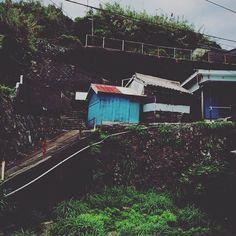 【funkydoguu】さんのInstagramの写真をピンしています。《坂の上の廃屋  #坂の上 #坂 #廃屋 #石垣  #雑草 #フェンス #手すり #林  #配管 #電線 #曇り空 #8月29日  #desertedhouse #cloudysky  #weed #electric_cable #piping  #slope #fence #handrail》