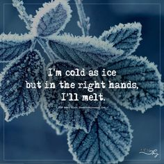 Festive season is here with cold and winter. It is time of fun, to cherish, to have lots of hot chocolate & Coffee and do your favorite stuff. Ahmmm like watching netflix. So here are some great winter quotes for your inspiration. Ice Quotes, Cold Quotes, Snow Quotes, Heart Quotes, Super Quotes, Quotes About Snow, Quotes About Winter, Snow Sayings, Winter Qoutes