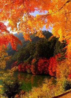 "coiour-my-world: "" Gate to Autumn ~ Lake Inagakko, Yamanashi, Japan """