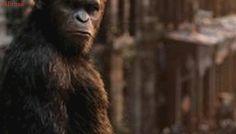 Planeta dos Macacos: andy serkis fala sobre atuação digital