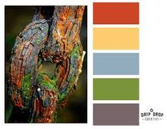 Bilderesultat for color inspiration