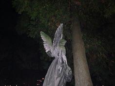 tomasz margol - Kraków, 2015 ***buy an ANGEL as an art print*** Hello Kit, Jm Barrie, Yennefer Of Vengerberg, Buffy Summers, Southern Gothic, Creepy Cute, The Villain, My Chemical Romance, At Least