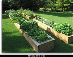Нажмите на изображение для увеличения.  Название:garden1l.jpg Просмотров:56 Размер:66.1 Кб ID:4091866