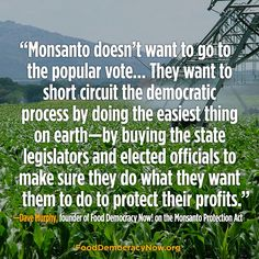 Right now Monsanto and the biotech industry are using the Monsanto Protection Act as a model in Oregon and other states to strip farmers and citizens of their democratic rights.   Read more from Dave Murphy here: http://www.theepochtimes.com/n3/17987-monsanto-protection-act-takes-shape/