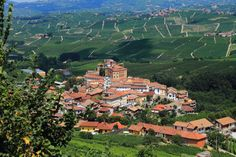Piedmont, Italy Notable.ca | Lonely Planet Names its Best European Vacation Spots for 2015