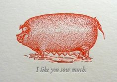 30 Punny Valentines For Everyone You Love Diy Valentines Cards, Vintage Valentines, Be My Valentine, Valentine Puns, Pig Puns, Pun Card, This Little Piggy, Letterpress Printing, Teacher Appreciation Gifts