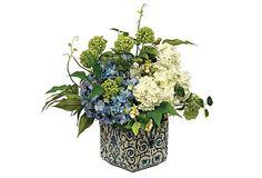 14'' Pot Hydrangea Mix on OneKingsLane.com