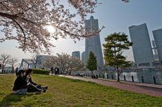 view of the Minato Mirai 21 skyline in Yokohama from the Kishamichi Promenade.
