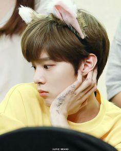My bias ❤❤