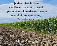 Select Verses From Proverbs 12 Proverbs Kjv, Book Of Proverbs, Scripture Pictures, Scripture Verses, Bible 2, Bible Quotes, Great Books To Read, Lord And Savior, Our Life