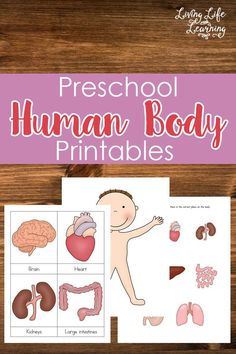 When you have to teach about the human body, there's a lot of new vocabulary that has to be taught first. These preschool printables with the 3-part cards are great for teaching new words. The human body is a great topic to teach a preschooler because all of the material is in front of you. My daughter is always asking me about what is happening to her food after she eats it. I know that kids always find the end destination of food in our bodies hilarious. When we studied muscles, I think…